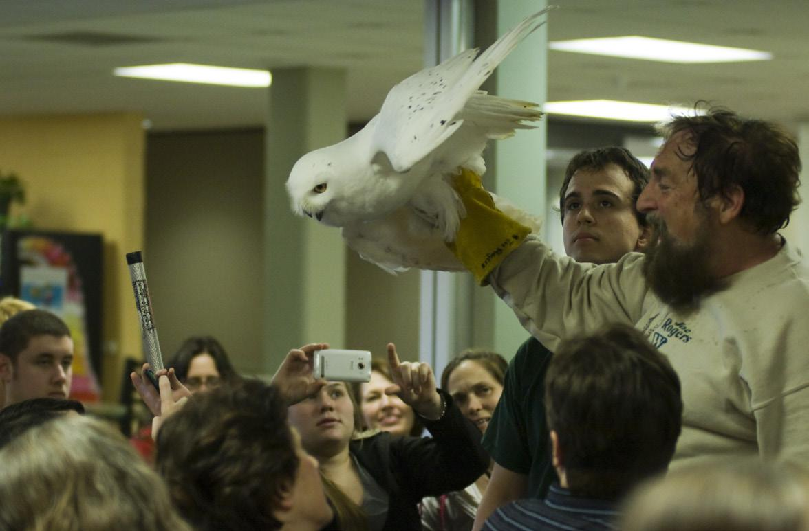 Joe Rogers, founder of the Wildlife Recovery Association, has been influenced by nature his whole life. At Birds of Prey events, he showcases and teaches about Michigan raptors.