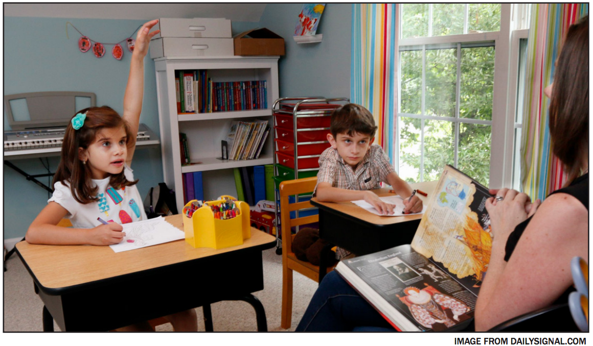 Homeschooling hurts children's overall learning ability