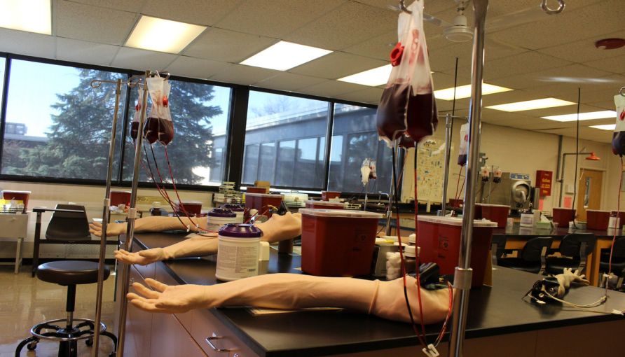 Students practice phlebotomy with replication arms and blood.