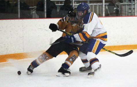 Left Winger Sheldon Varhol fight Laker defenseman Ryan Brown for the puck. (Photo by Elizabeth Casella, Managing Editor)