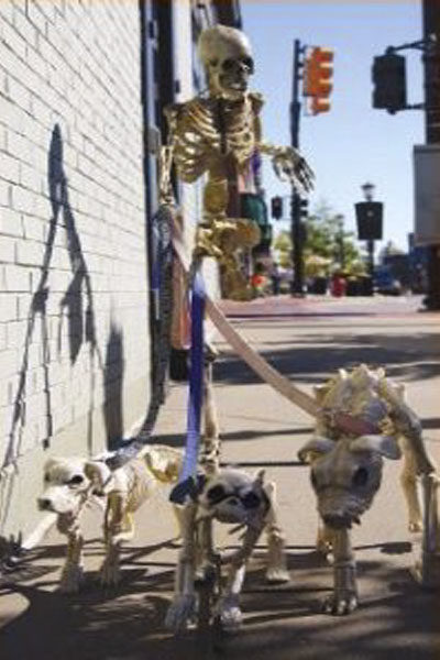 Northville Skeletons